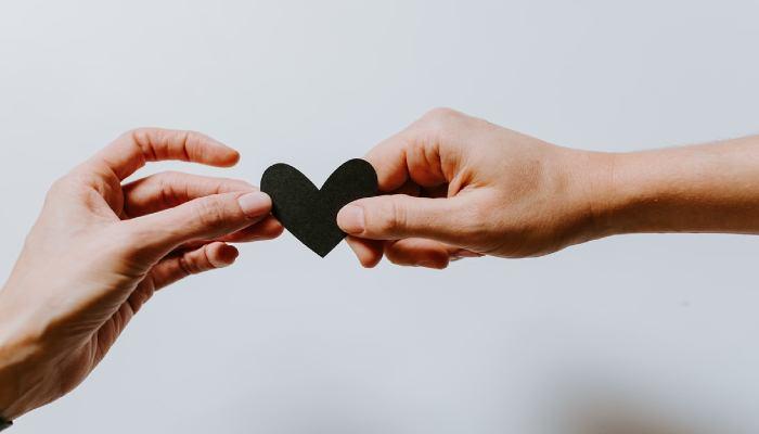 所属先のサポート体制に満足していますか?―研究者14人の体験談